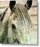 Buckskin Artwork Metal Print