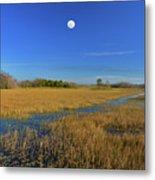 7- Everglades Moon Metal Print