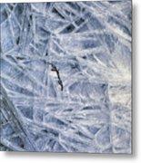7. Ice Encrustation, Upper West Allen Metal Print
