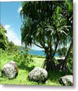 Keanae Maui Hawaii Metal Print
