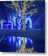 Lights, Christmas, Light, Christmas Tree, Green, Color, Red, Blu Metal Print