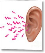 Sound Entering Human Outer Ear Metal Print