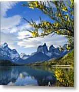 Springtime In Torres Del Paine Metal Print