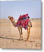Thar Desert - India Metal Print