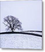Winter In Wensleydale Metal Print