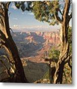 713261 V Desert View Grand Canyon Metal Print