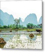 Karst Rural Scenery In Spring Metal Print