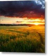Landscape Pics Metal Print