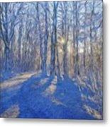 A Landscape Nature Metal Print