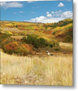 7797 Ranch Of Color Metal Print