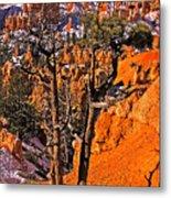 Bryce Canyon N.p. Metal Print