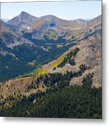 Autumn Tundra Turning To Gold  On Mount Yale Colorado Metal Print