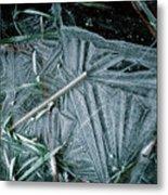 8. Ice Patterns, Whitfield Metal Print
