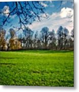 Landscape Graphics Metal Print