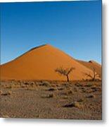 Sossusvlei Dunes Metal Print