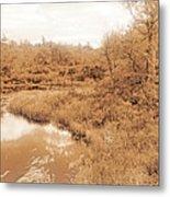 Stream In Autumn, Pocono Mountains, Pennsylvania Metal Print