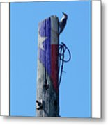 #8667 Woodpecker Metal Print