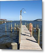 Indian River Lagoon At Eau Gallie In Florida Usa Metal Print