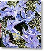 Close-up Of Flowers Metal Print