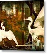 9 Egrets Metal Print