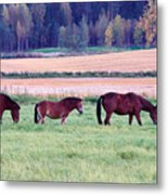 Horses Of The Fall Metal Print