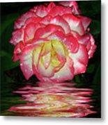 Nice Rose Metal Print