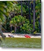 Palmetto Forest On Hunting Island Beach Metal Print