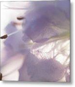 Pastel Purple Flowers Metal Print