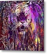Tiger Predator Fur Beautiful  Metal Print