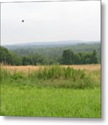 #940 D1095 Farmer Browns West Newbury Metal Print