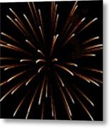 A 4th Of July Flower Metal Print by Robert Wolverton Jr