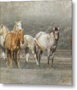 A Band Of Horses Metal Print