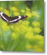 A Beautiful Swallowtail Butterfly On A Yellow Wild Flower Metal Print
