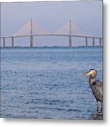 A Bird And A Bridge Metal Print