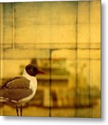 A Bird In New Orleans Metal Print