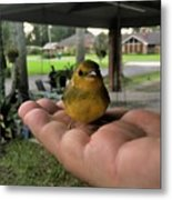 A Bird In The Hand Metal Print