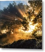 A Blast Of Sunrise Metal Print