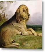 A Bloodhound In A Landscape Metal Print