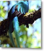 A Blue Stand Out Metal Print