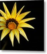 A Bright Yellow Star Metal Print