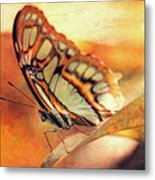 A Butterfly On A Leaf  Metal Print