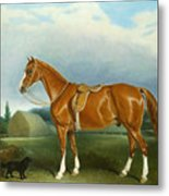 A Chestnut Hunter And A Spaniel By Farm Buildings  Metal Print by John E Ferneley
