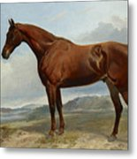 A Chestnut Hunter In A Landscape Metal Print