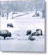 A Cold Winter's Day Metal Print