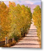 A Colorful Country Road Rocky Mountain Autumn View  Metal Print