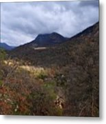 A Colorful Scene Of Burned And Lush Interspersed Foliage In The Southwest Foothills Of The Sierra Ne Metal Print