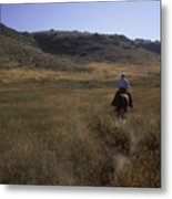 A Cowboy Looks For His Herd Metal Print