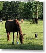 A Day At Chimney Field 1 Metal Print