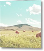 A Day In The Fields Metal Print