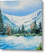 A Day In Tuckerman's Metal Print